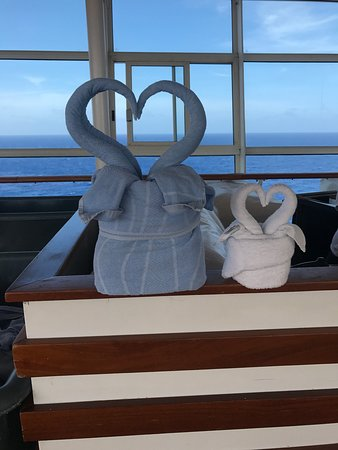 Oasis of the Seas: Special Towel- Animals made daily at the towel stations!!