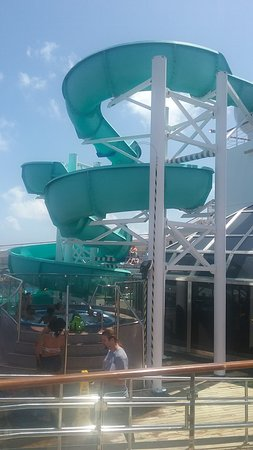 Carnival Freedom: on the Freedom