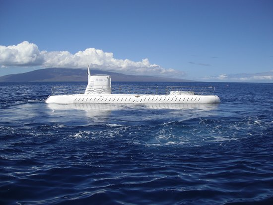 Eurodam: The Atlantis submarine has surfaced and is waiting to unload passengers bef