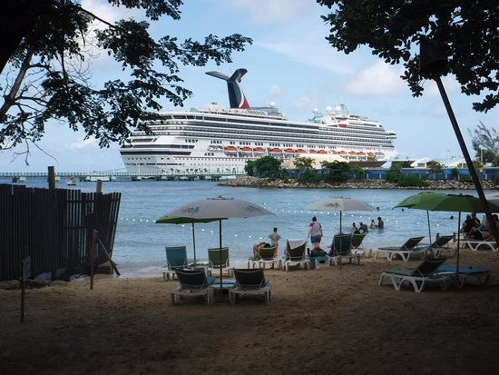 Carnival Freedom: The view of the Freedom from the beach at Margaritaville.