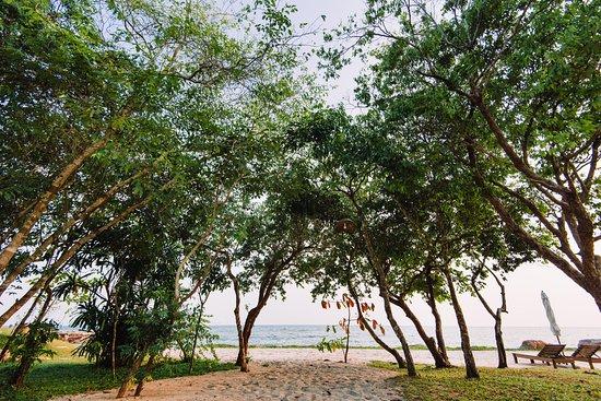 Landscape - Picture of Green Bay Phu Quoc Resort & Spa, Phu Quoc Island - Tripadvisor