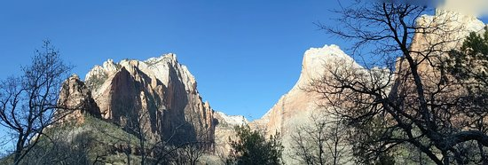 Zion National Park: Along the Sand Bench Trail