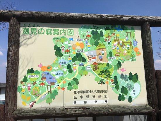 Kasahara Forest of Shiomi