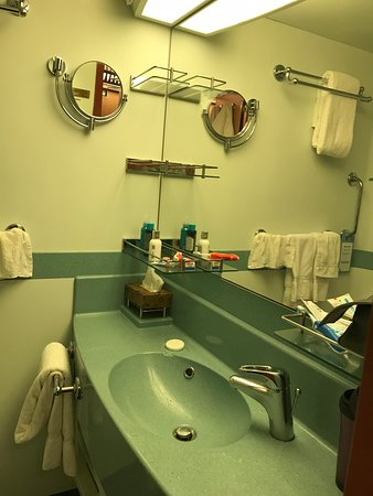 Carnival Dream: Bathroom 6306