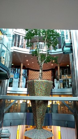 Celebrity Equinox: Floating tree in the center of the ship.
