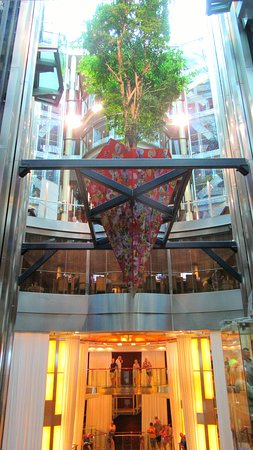 Celebrity Solstice: The living tree suspended in the atrium, an item of curiosity!