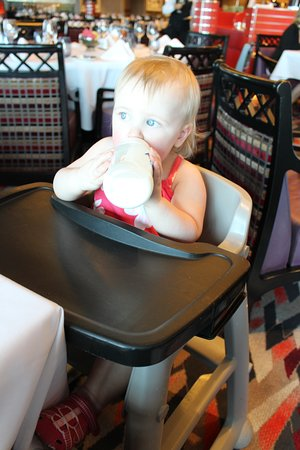 Nieuw Amsterdam: Holland America high chair with tray