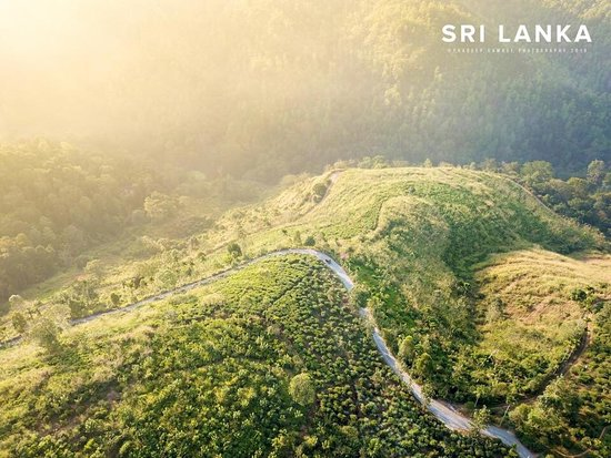 INTRODUCTION TO SRI LANKA They say there is no other country in the world, like Sri Lanka. A smiling sun all year round, golden beaches, ancient cities, exciting safaris, colourful culture, adventure sport and lovely people… where else can you get all these in one place?
