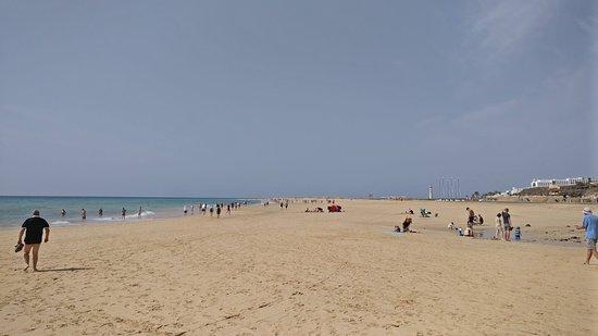 Iberostar Playa Gaviotas: Playa Gaviotas