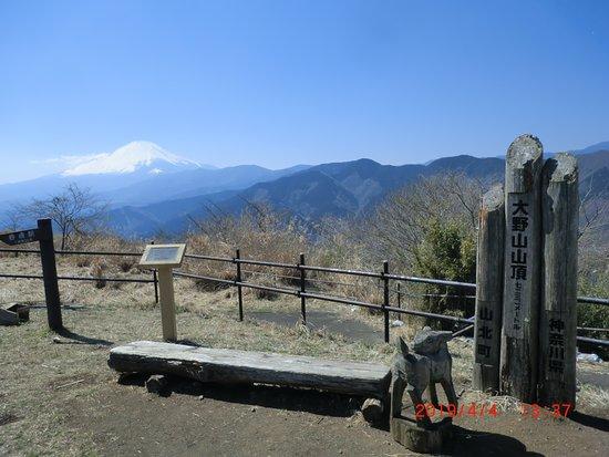 Yamakita-machi, اليابان: ここからの富士山もいいです。