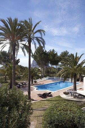 Garden-apartment - Picture of Calador, Ibiza - Tripadvisor