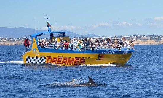 Albufeira, Portugal: Dream Wave Algarve