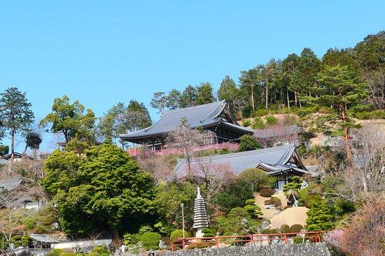 埼玉県日高市にある高麗神社の南側にあり高麗神社に祀られてる高麗王若光の菩提寺として創建された寺院です。