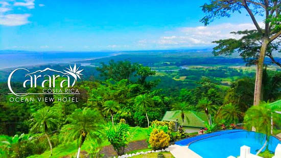 Relacx at the Pool at Carara Ocean View Hotel
