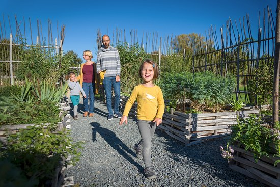 Saumur, Frankrike: au coeur du jardin médicinal