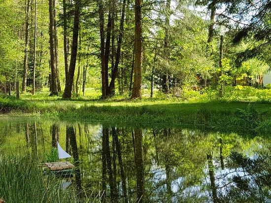 Espace zen autour de l'étang  pond and relaxing area