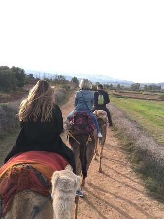 Day tour in Agafay dessert and 3 Valleys Atlas Mountains With Locals.: Camel ride