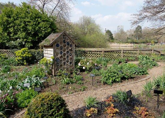 Duck Island Cottage Garden, St James Park