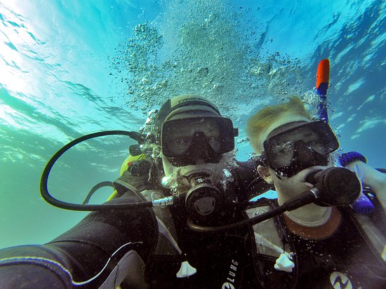 Crazy Dolphin Diving Center: Красное море