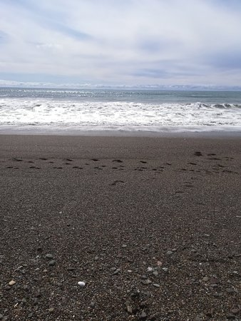 Moonstone Beach Photo