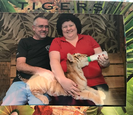 Myrtle Beach Safari - 2019 All You Need to Know BEFORE You ...