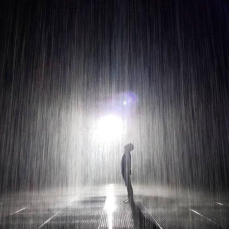 Rain Roomの中