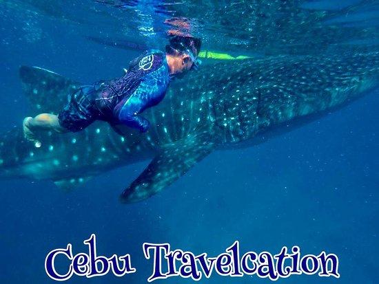 Cebu Travelcation Philippines