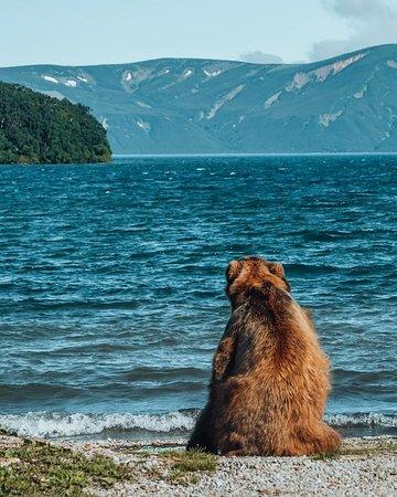 Kamchatka Krai, Russia: А вы уже запланировали путешествие на Камчатку? 😉 🐻