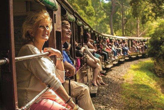 膨胀比利蒸汽火车,亚拉河谷和希尔斯维尔野生动物保护区一日游