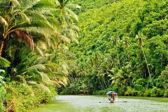 Excursion de 3jours en Amazonie au...