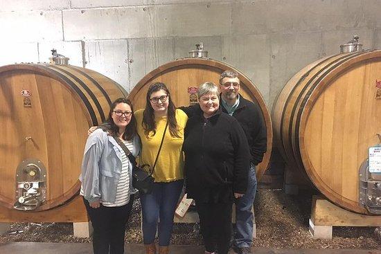 蒙彼利埃的小团体半日朗格多克Pic Saint-Loup葡萄酒之旅