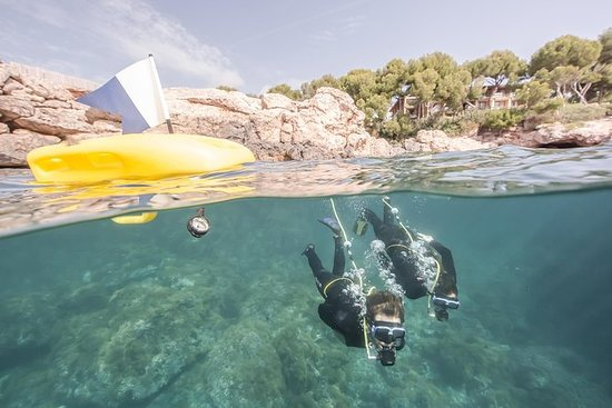 Punta Negra Diving Experience in Mallorca