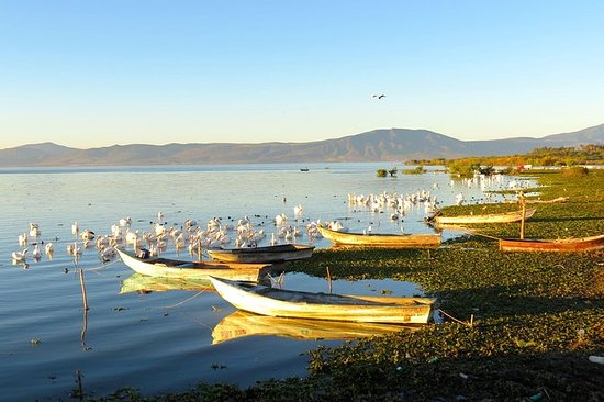 Full-Day Lake Chapala Tour fra...