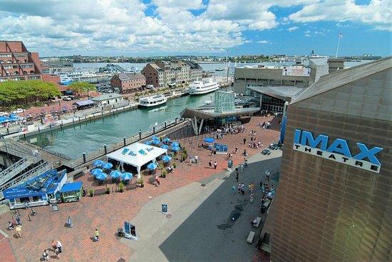 新英格兰水族馆的西蒙斯IMAX影院