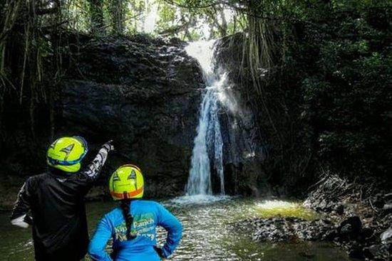 Kauai vattenfall Picnic Tour och ...