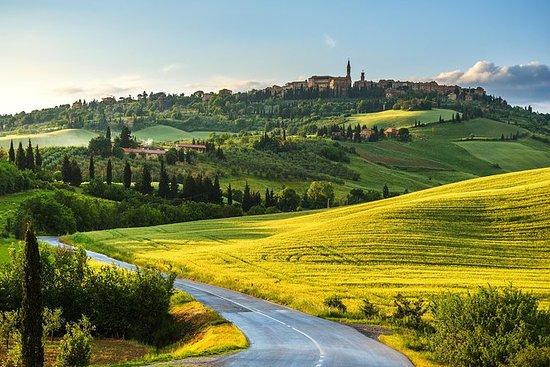 Tour privato di Montalcino e