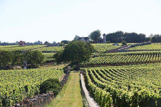 Experiencia de Borgoña en el Chateau...