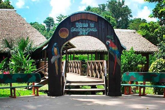 Eco Amazonia Lodge de 3 días en la...