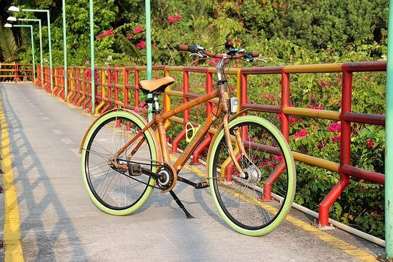 Unique Bamboo Bicycle Tour in the...