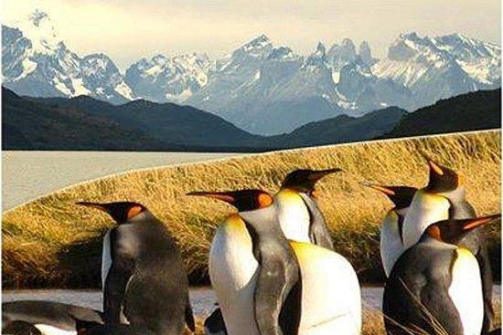 Torres del Paine & Tierra del Fuego...