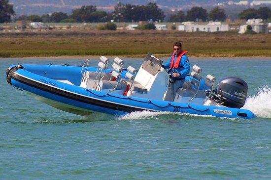 Schnellboot-Touren - Ria Formosa