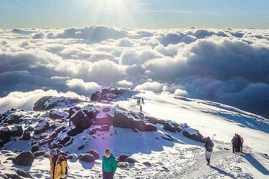 Mt kilimanjaro (highest in Africa) hike 6 days Rongai route: kilimanjaro hike 6days Rongai route