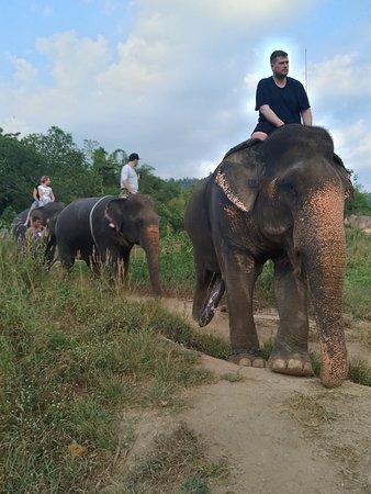 Aonang Elephant Park