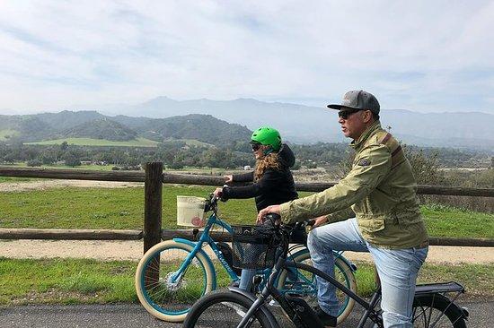 Visites guidées en vélo électrique à travers la magnifique ville...