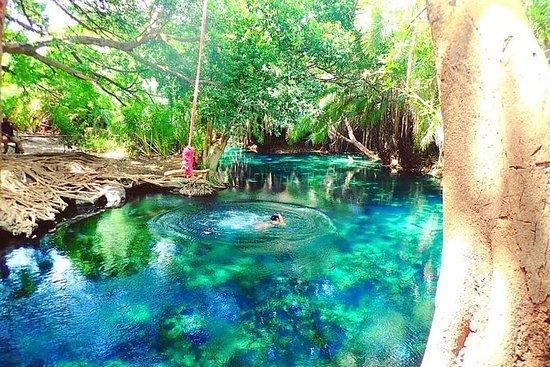 Materuni waterfalls, coffee tour...
