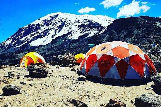 8 days Lemosho route Climbing Mt. Kilimanjaro: 8 days climb Mt Kilimanjaro via Lemosho route