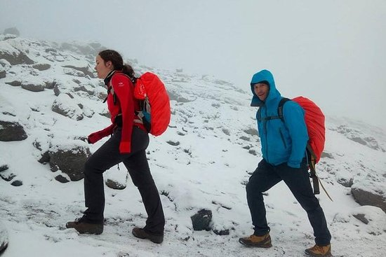 6 Days Lemosho route Climbing Mt...