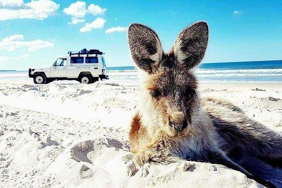 Bribie Island Adventure Tour