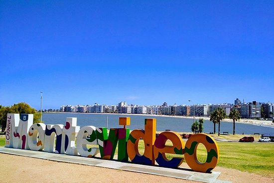 Private City Tour Montevideo and Wine...