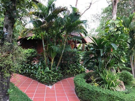 Kim Hoa Resort: Дорожка к бунгало